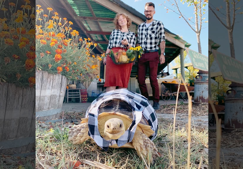 California Couple Coordinate Their Outfits With Their Pet Tortoise