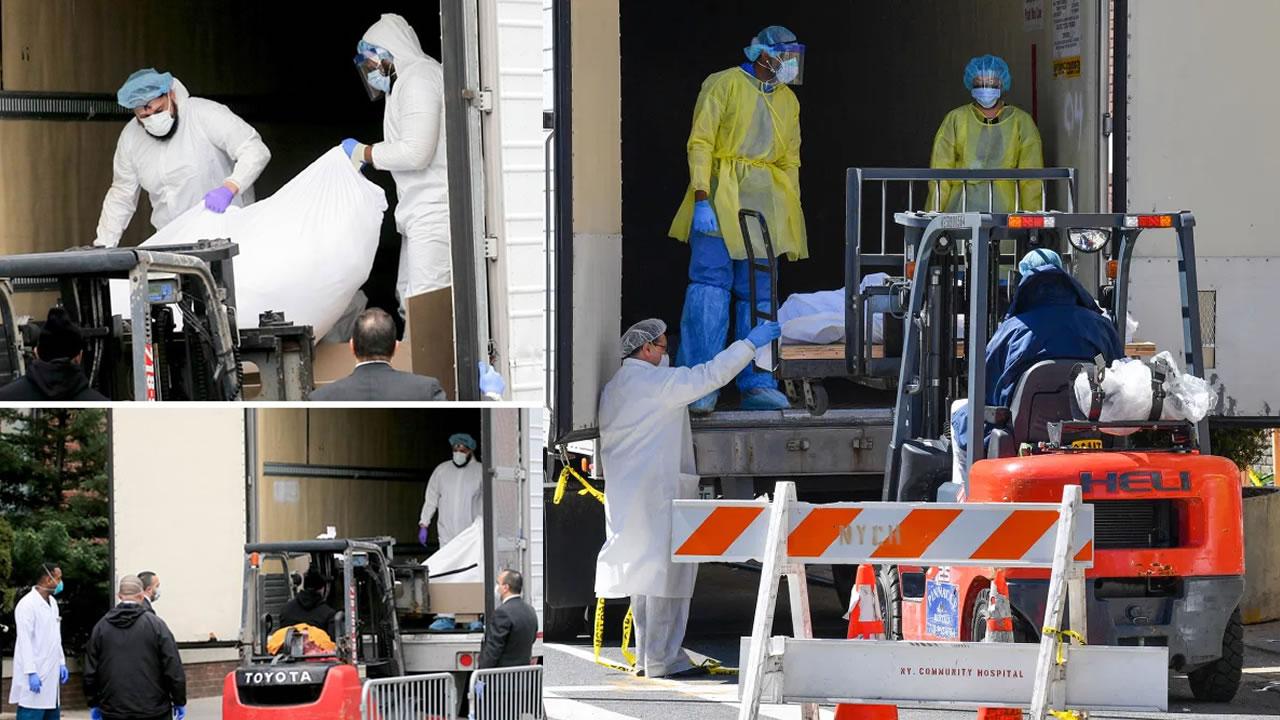 New York Forklift carry bodies Coronavirus