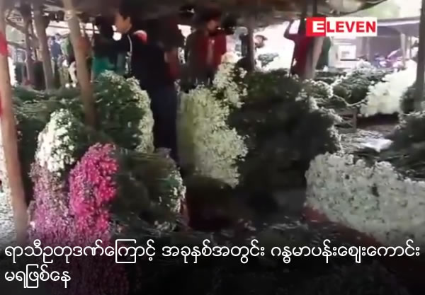 Chrysanthemums flower market is not good because of rain