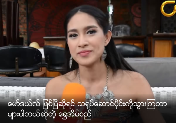 What does Shwe Ein Si think about why model try to become actress