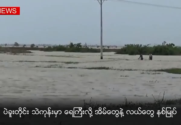 Farms and Houses at Bago Region is under water