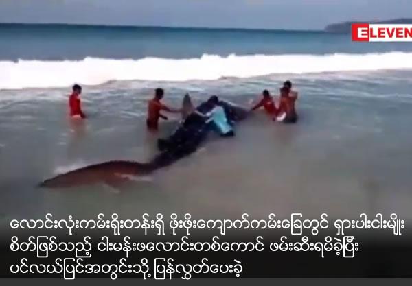 Rare specie fish got at Pho Pho Kyauk beach