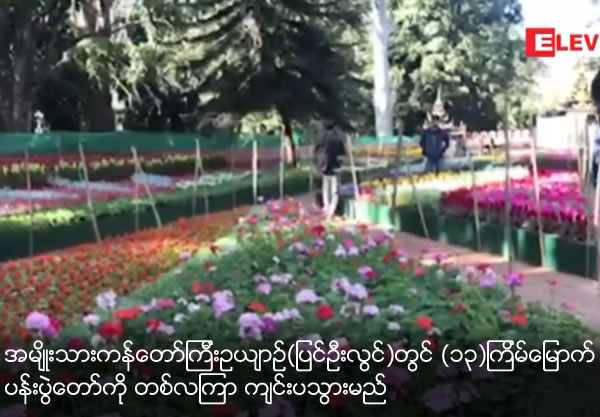 13th Flower Festival will be held for one month at National Botanical garden