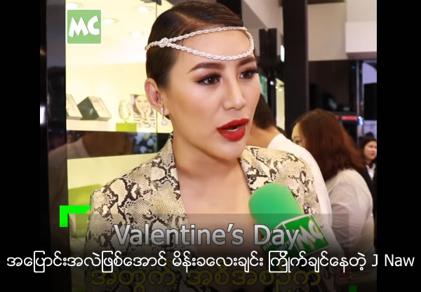 Model J Naw's Valentine's Day Plans