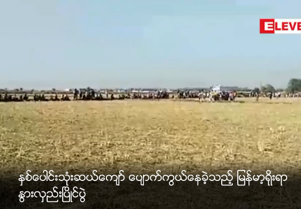 Myanmar Traditional cow cart competition which is dispeared last 30 years