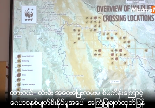 Dawei-Htee Khee road project could endanger forests and wildlife - Report