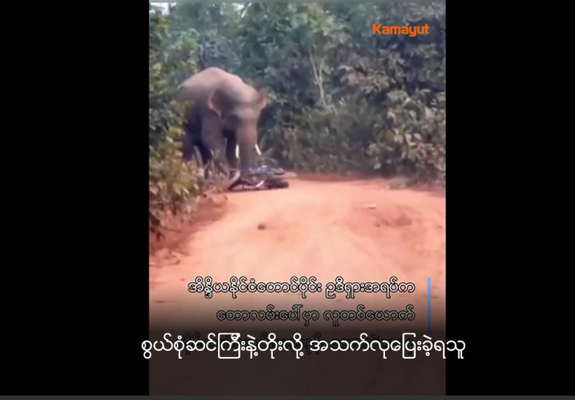 Angry wild elephant smashes motorcycle in Odisha