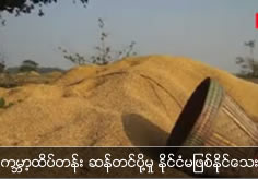 Myanmar can't be the world top rice exporting country