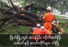 Trees and electric poles lay down by heavy wind in Myeik