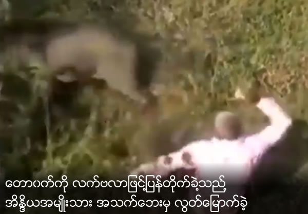 Indian man fights off ferocious wild boar with his bare hands